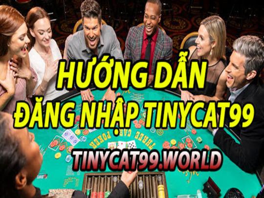 Hướng Dẫn Cách Đăng Nhập Tinycat99 Chính Xác Nhất
