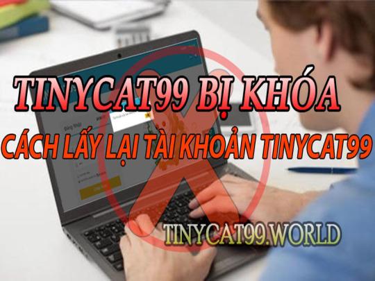 Nguyên Nhân Tài Khoản Tinycat99 Bị Khóa Và Cách Lấy Lại