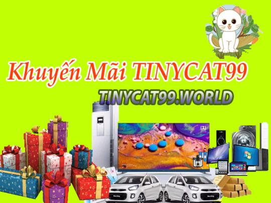 Các Chương Trình Khuyến Mãi Từ Nhà Cái Tinycat99