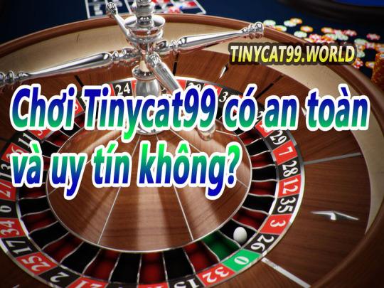 Cá Độ Ăn Tiền Tinycat99 Có An Toàn Và Đáng Tin Tưởng Không?